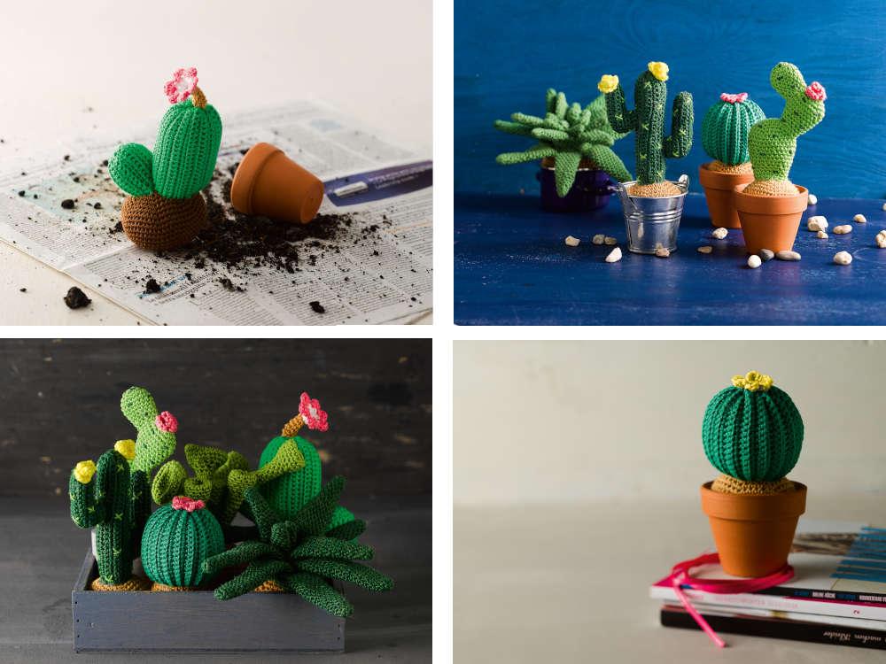 Kaktus-haekeln-viele-verschiedene-Kakteen-vor-weissem-Hintergrund