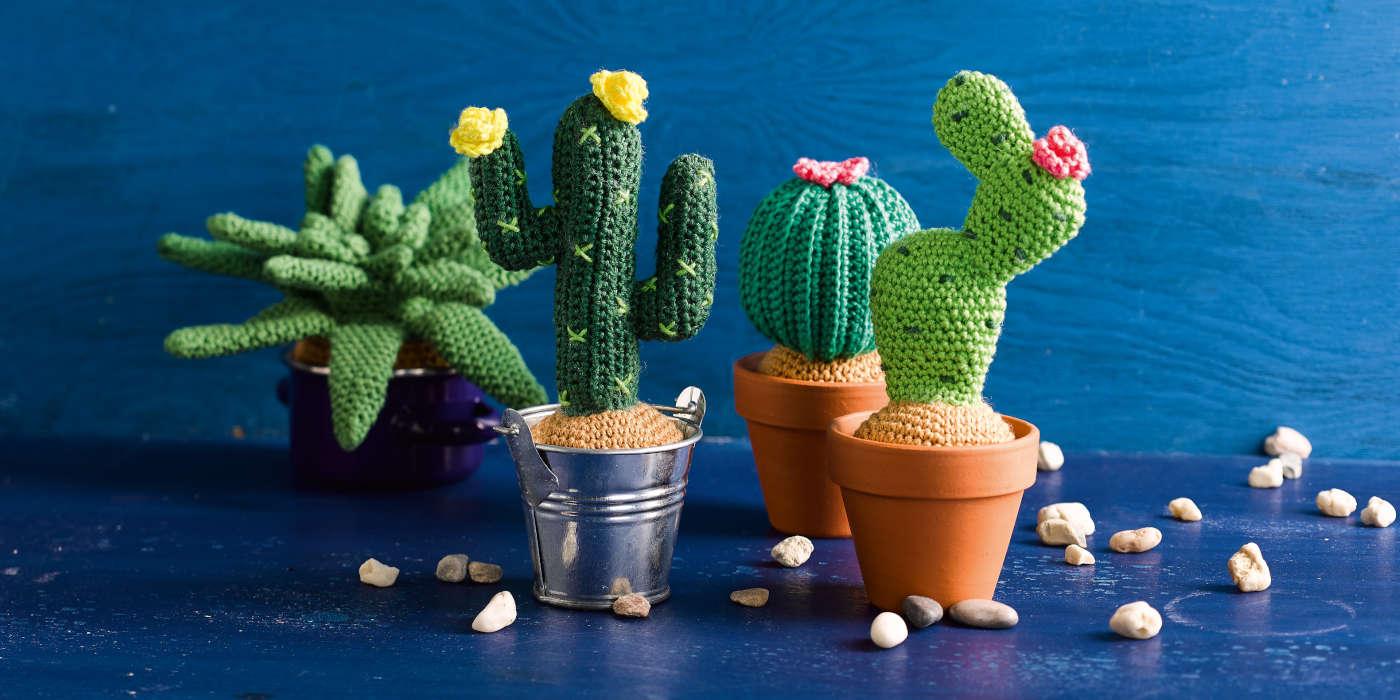 Kaktus-haekeln-viele-Kakteen-vor-blauem-Hintergrund