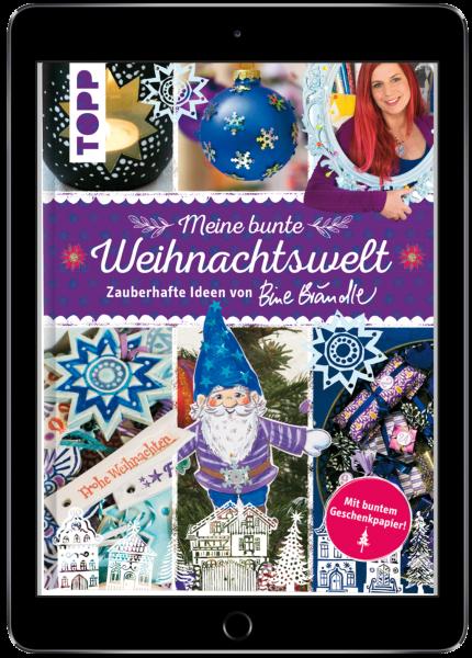 Meine bunte Weihnachtswelt (eBook)